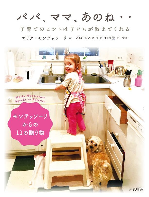 cover_fumeisha_anone_iro